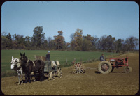 Farm scene, Marrs Twp., Posey county Indiana