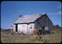 A negro shack in western Alabama